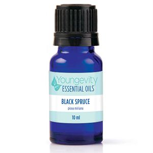Black Spruce Oil   Product Page
