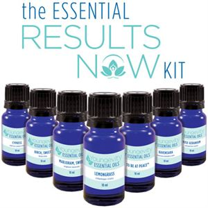 The Essential Results Now Kit Product Page